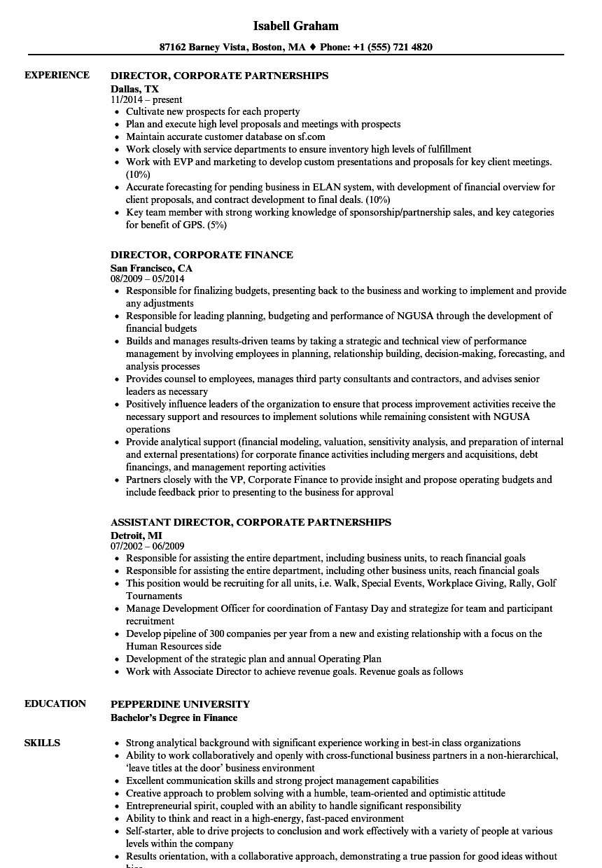 director  corporate resume samples