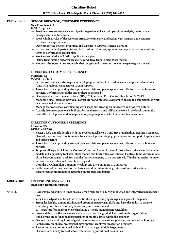 director customer experience resume samples  velvet jobs