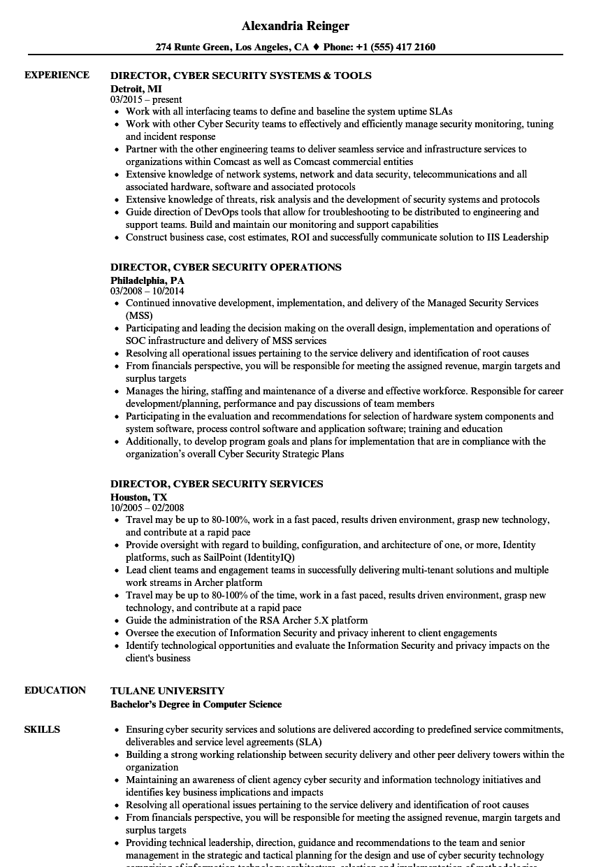 download director cyber security resume sample as image file - Cyber Security Resume