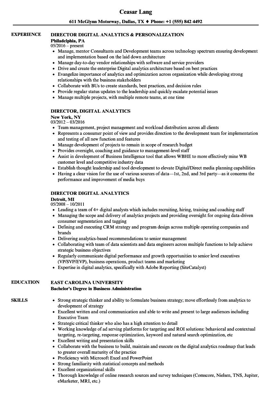 director  digital analytics resume samples