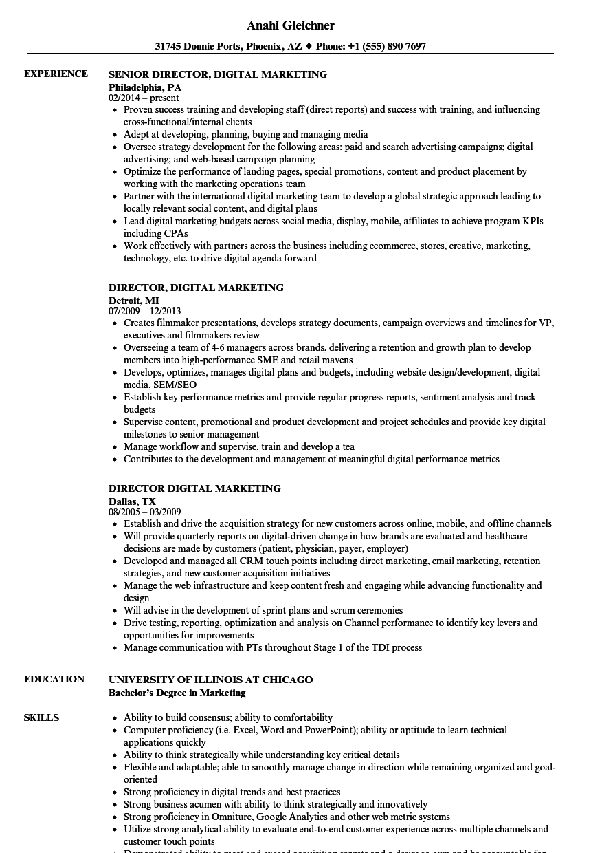 Director Digital Marketing Resume Samples Velvet Jobs