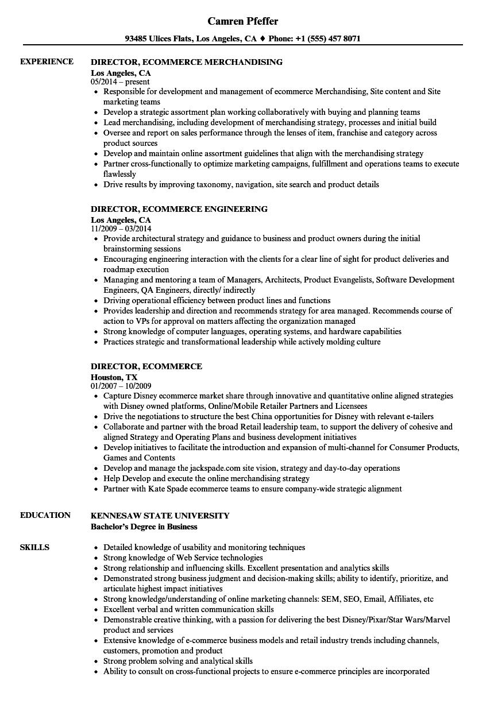 director  ecommerce resume samples