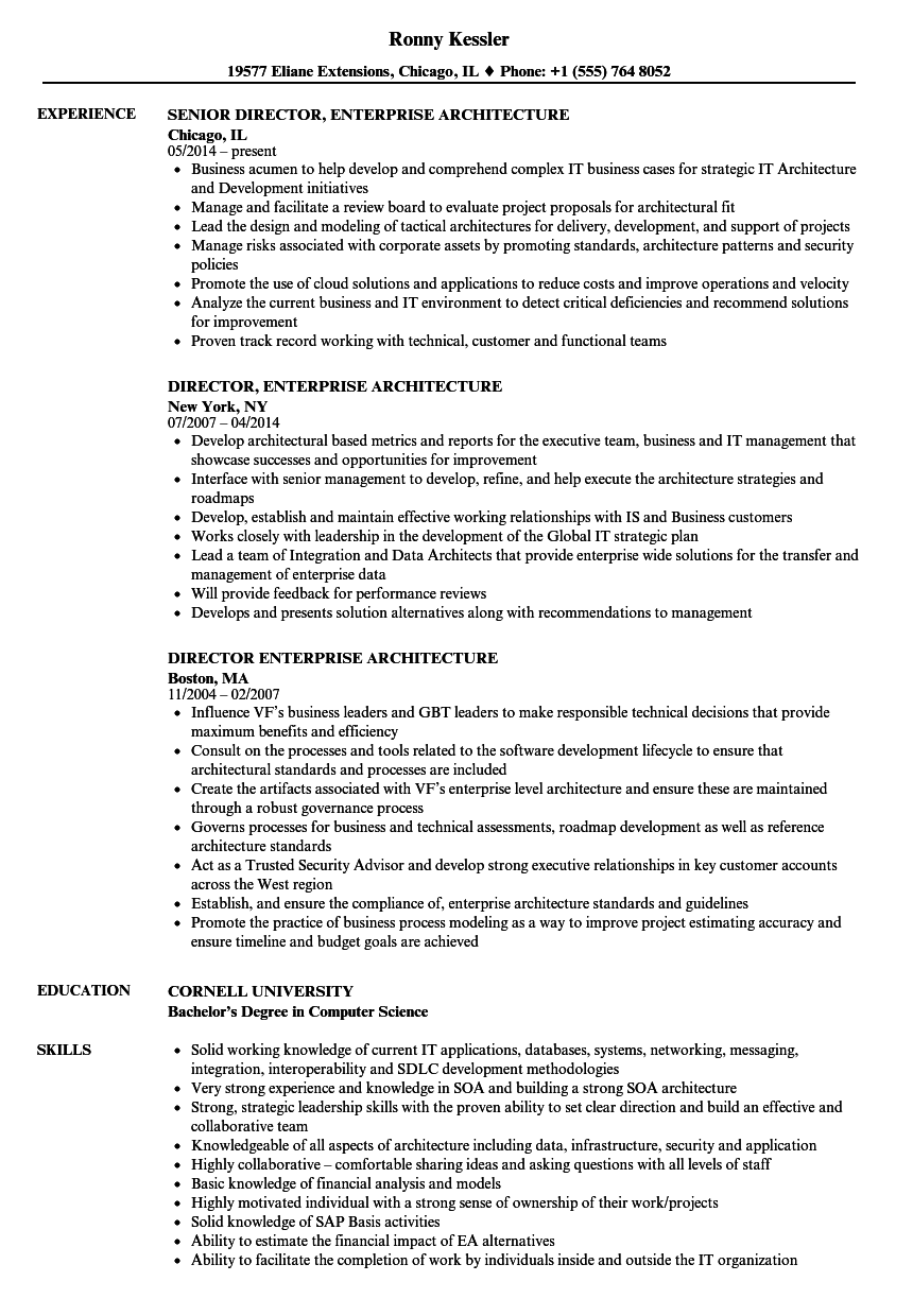 Download Director, Enterprise Architecture Resume Sample As Image File  Architecture Resume Examples