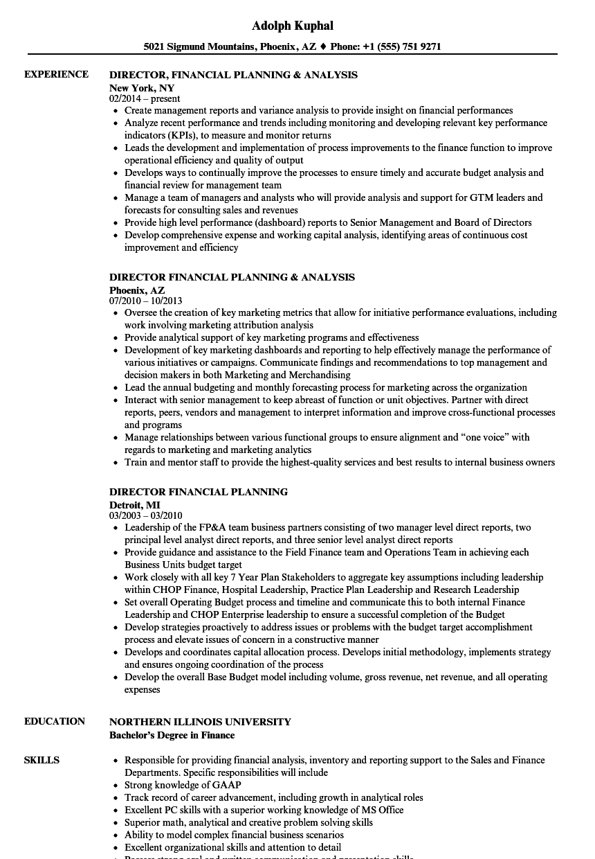 download director financial planning resume sample as image file