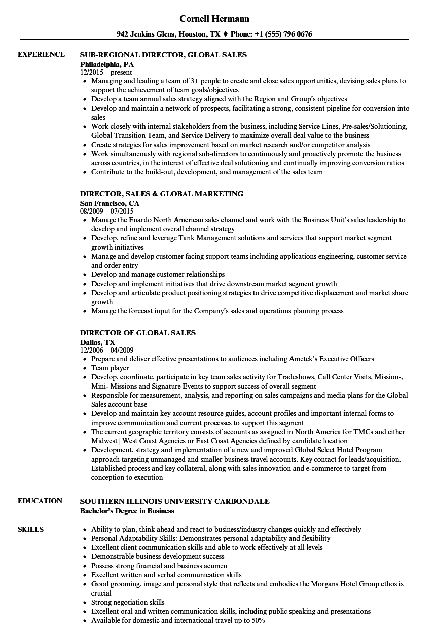 director global sales resume samples