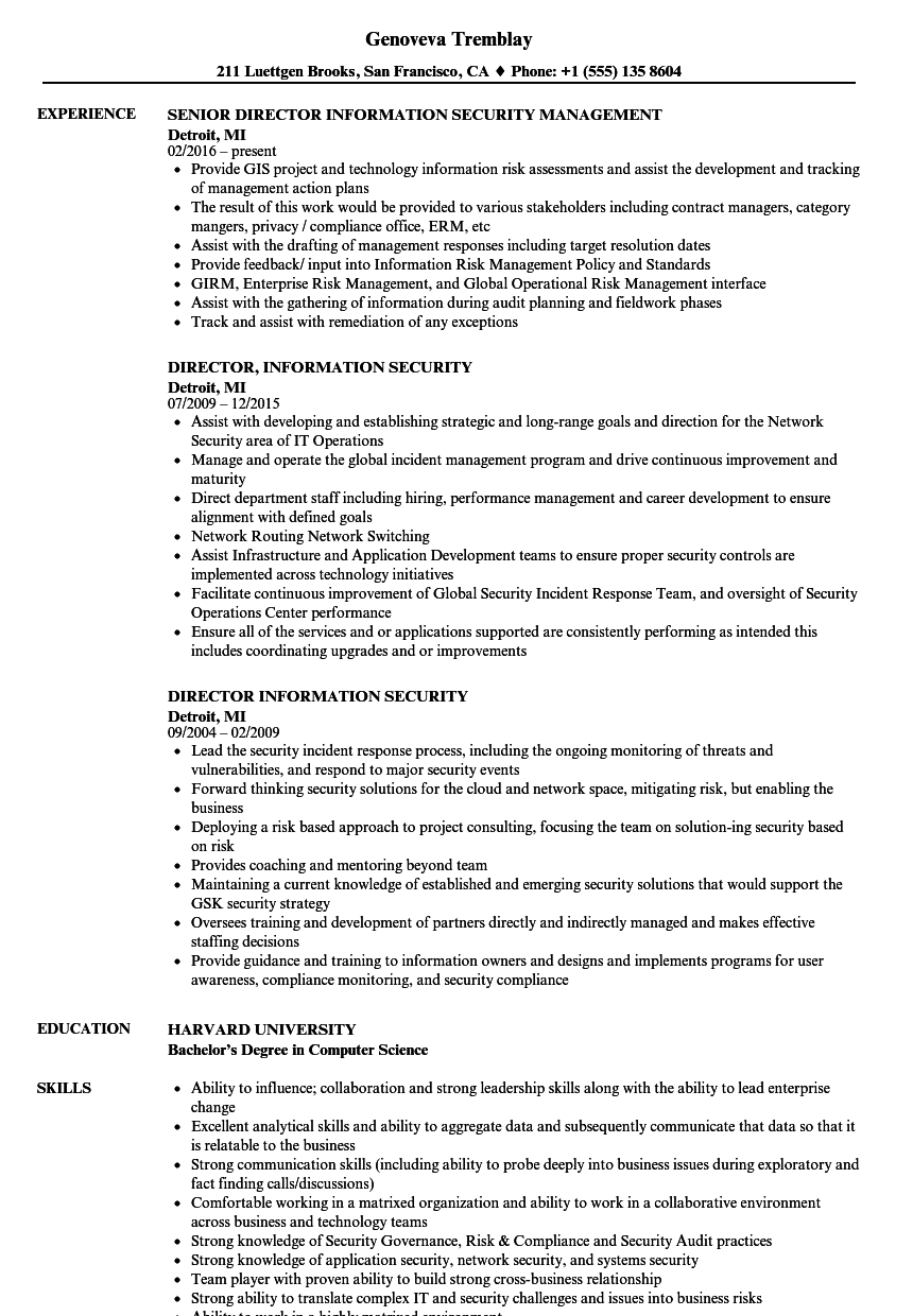 director information security resume samples velvet jobs