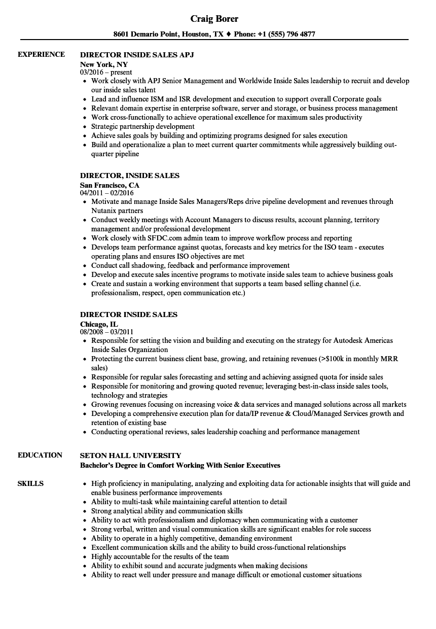 Director, Inside Sales Resume Samples | Velvet Jobs