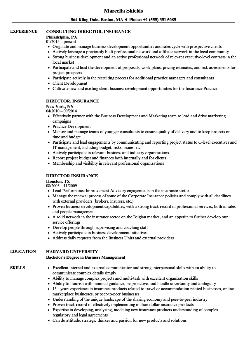 download director insurance resume sample as image file - Insurance Resume Examples