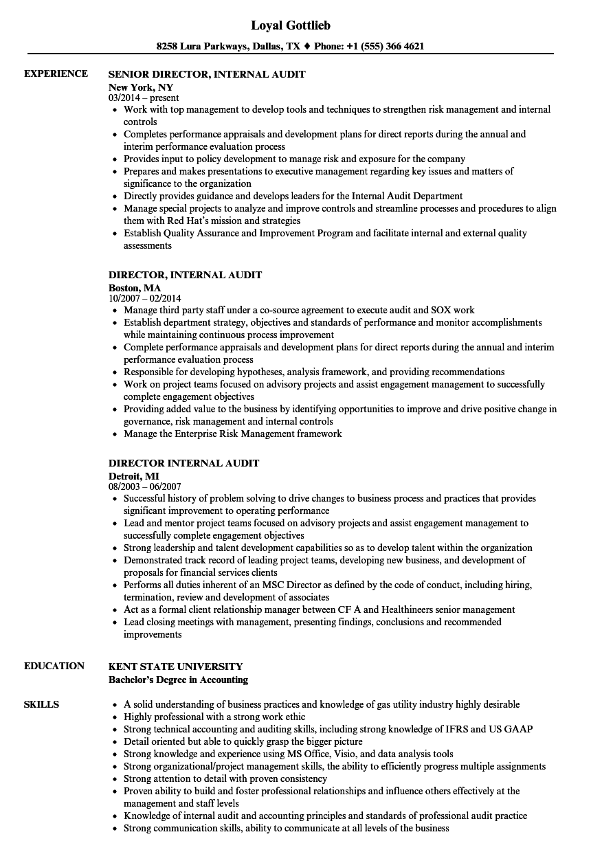 Director, Internal Audit Resume Samples | Velvet Jobs