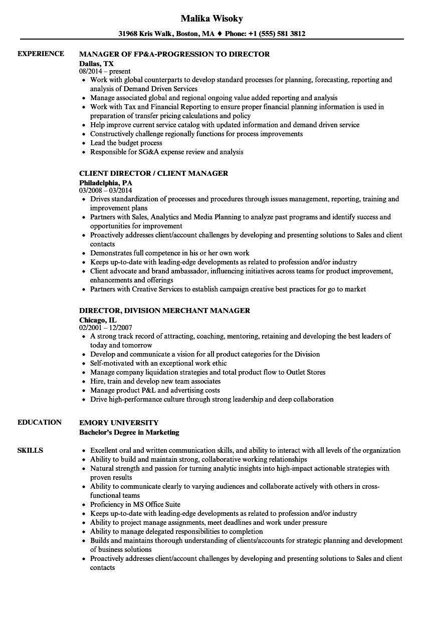 download director manager resume sample as image file