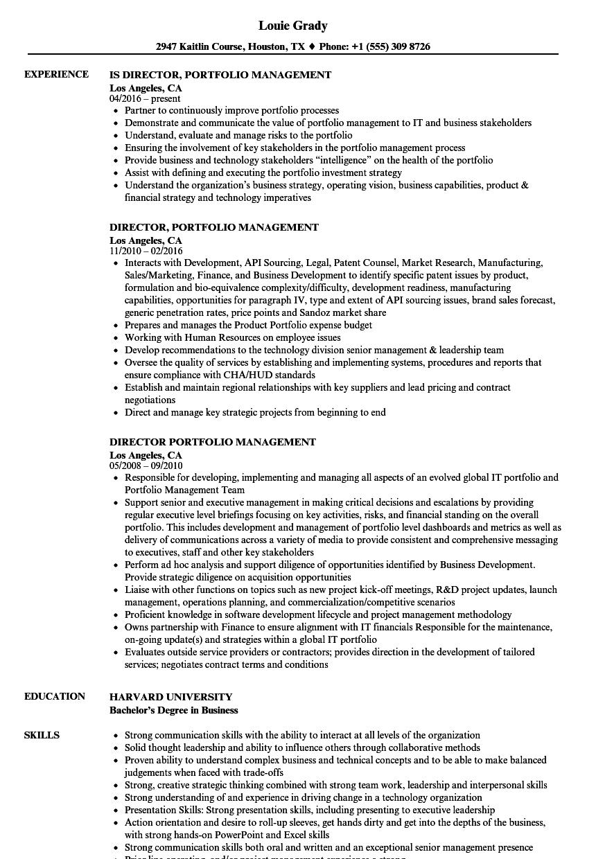 Director Portfolio Management Resume Samples Velvet Jobs