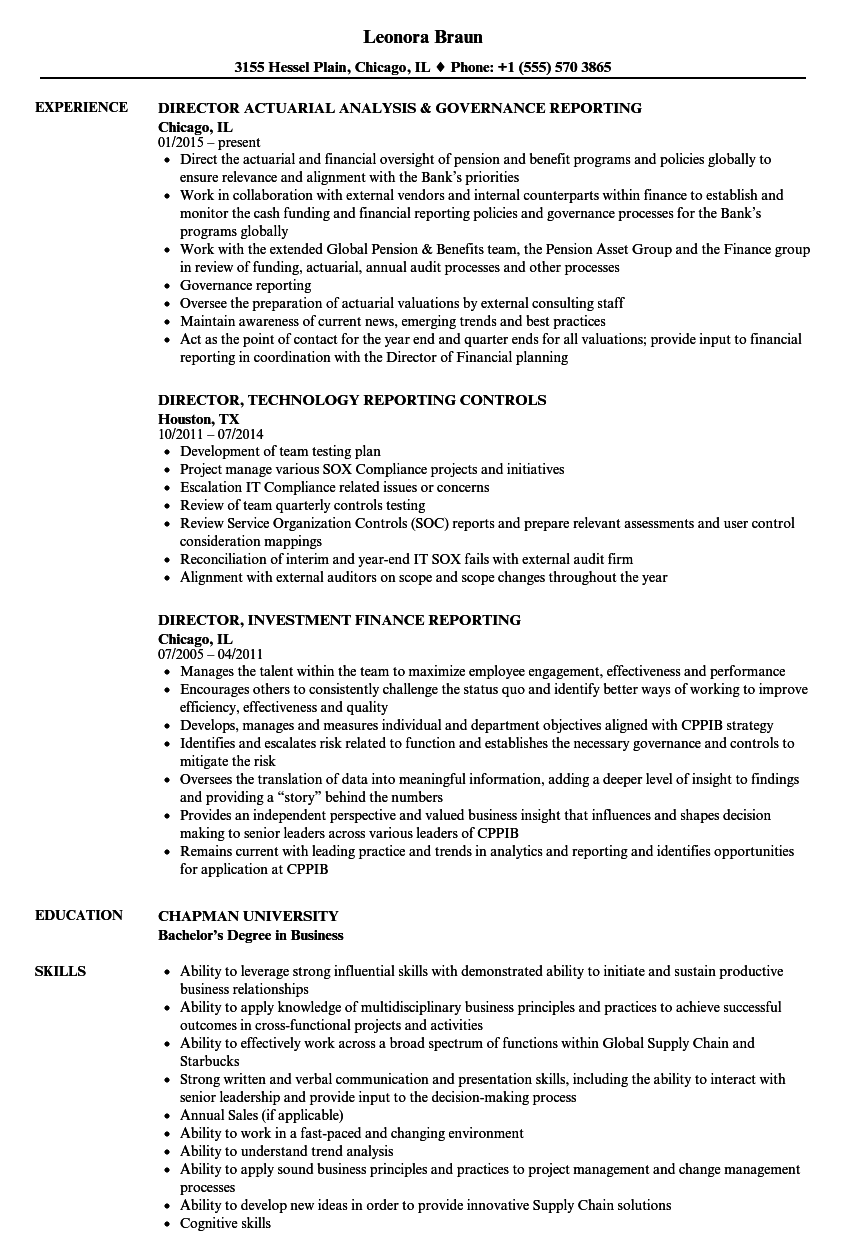 Director, Reporting Resume Samples | Velvet Jobs