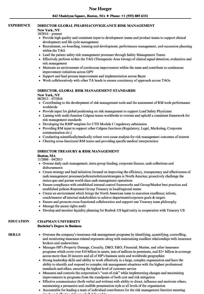 director risk management risk management resume samples