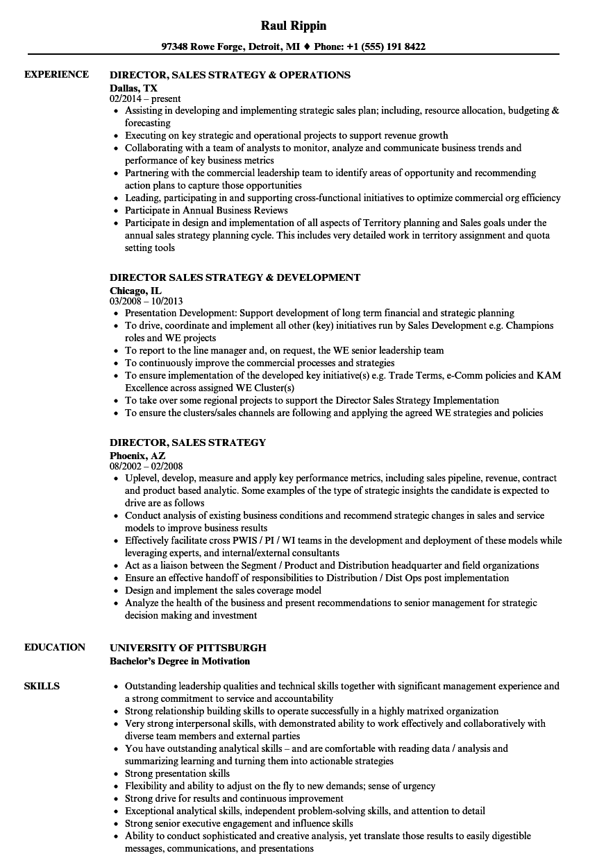 director  sales strategy resume samples