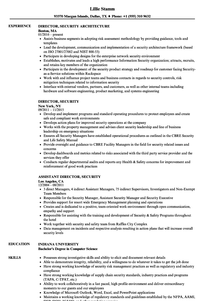 director  security resume samples