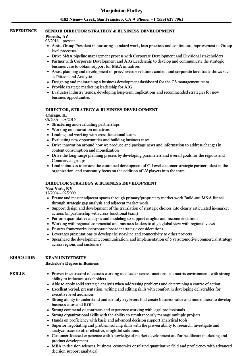 Director, Strategy & Business Development Resume Samples | Velvet Jobs