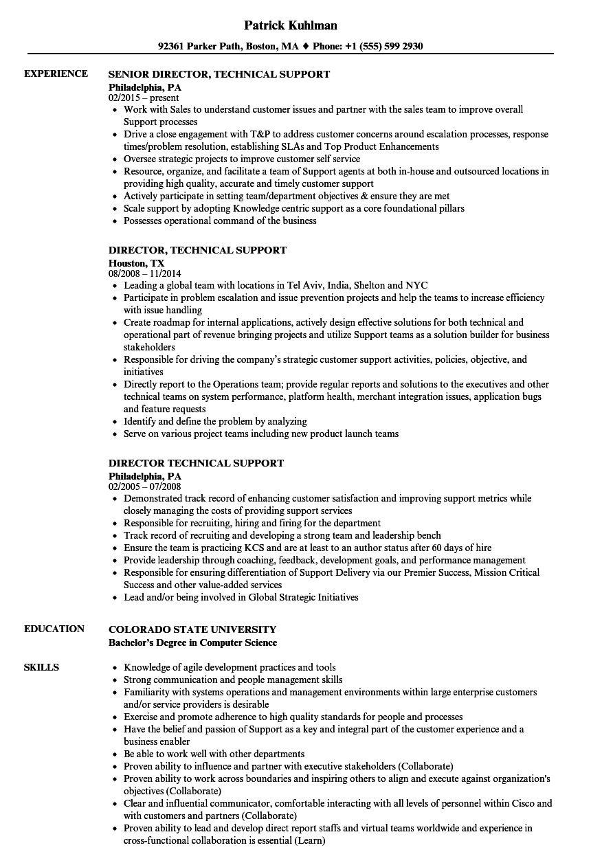 director technical support resume samples velvet jobs
