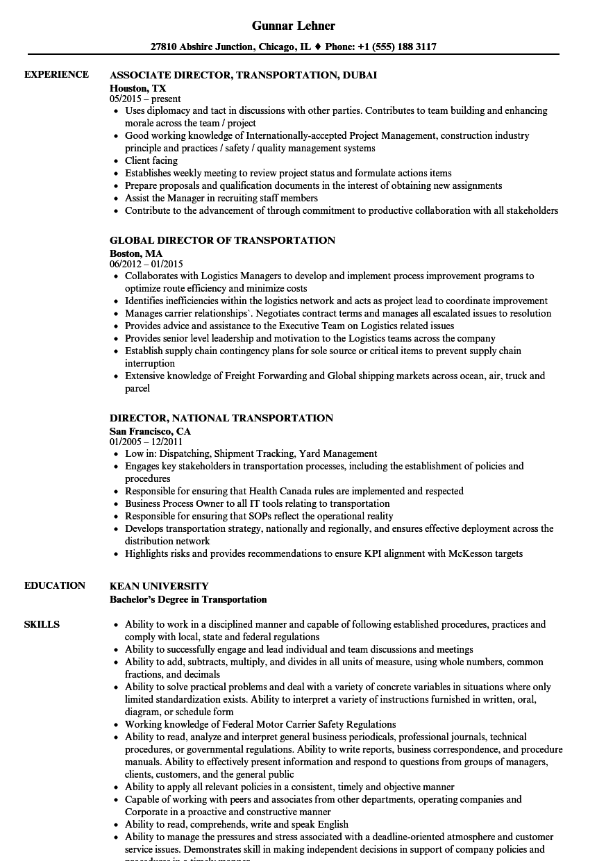 director transportation resume samples
