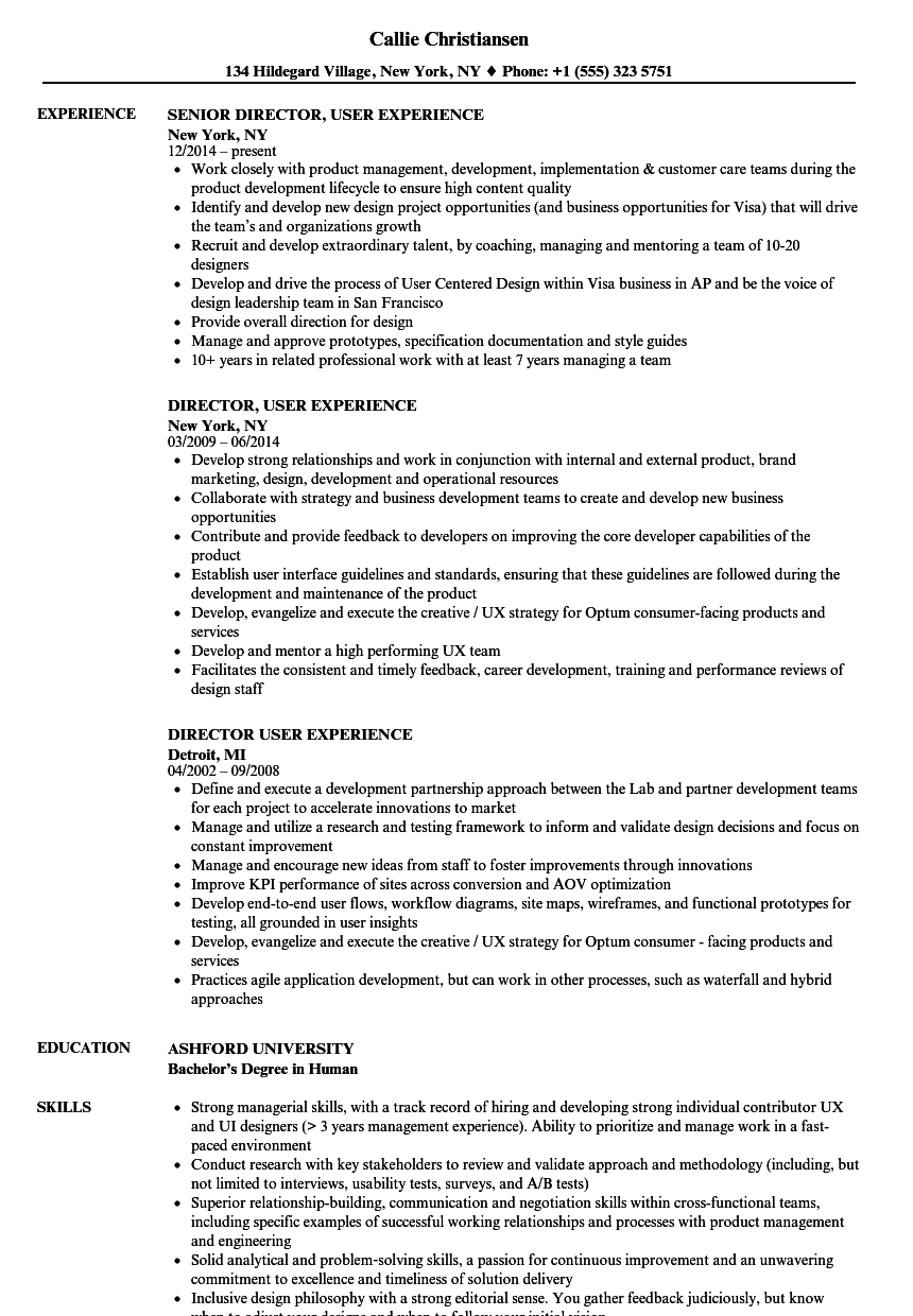 Director, User Experience Resume Samples | Velvet Jobs
