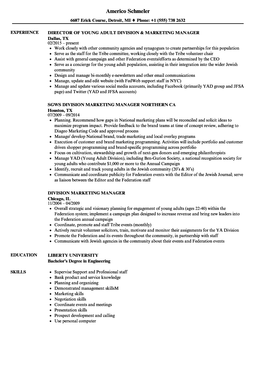 division marketing manager resume samples velvet jobs