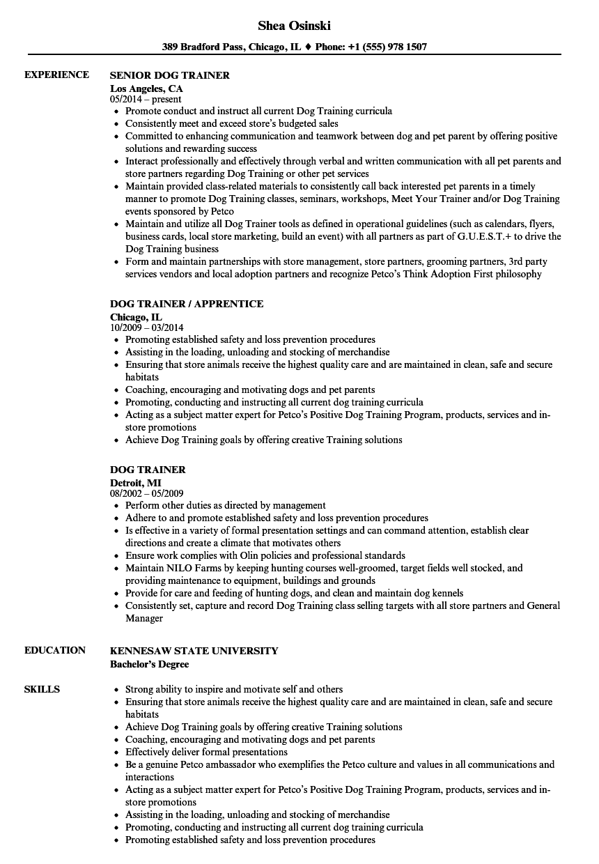 dog trainer resume samples velvet jobs