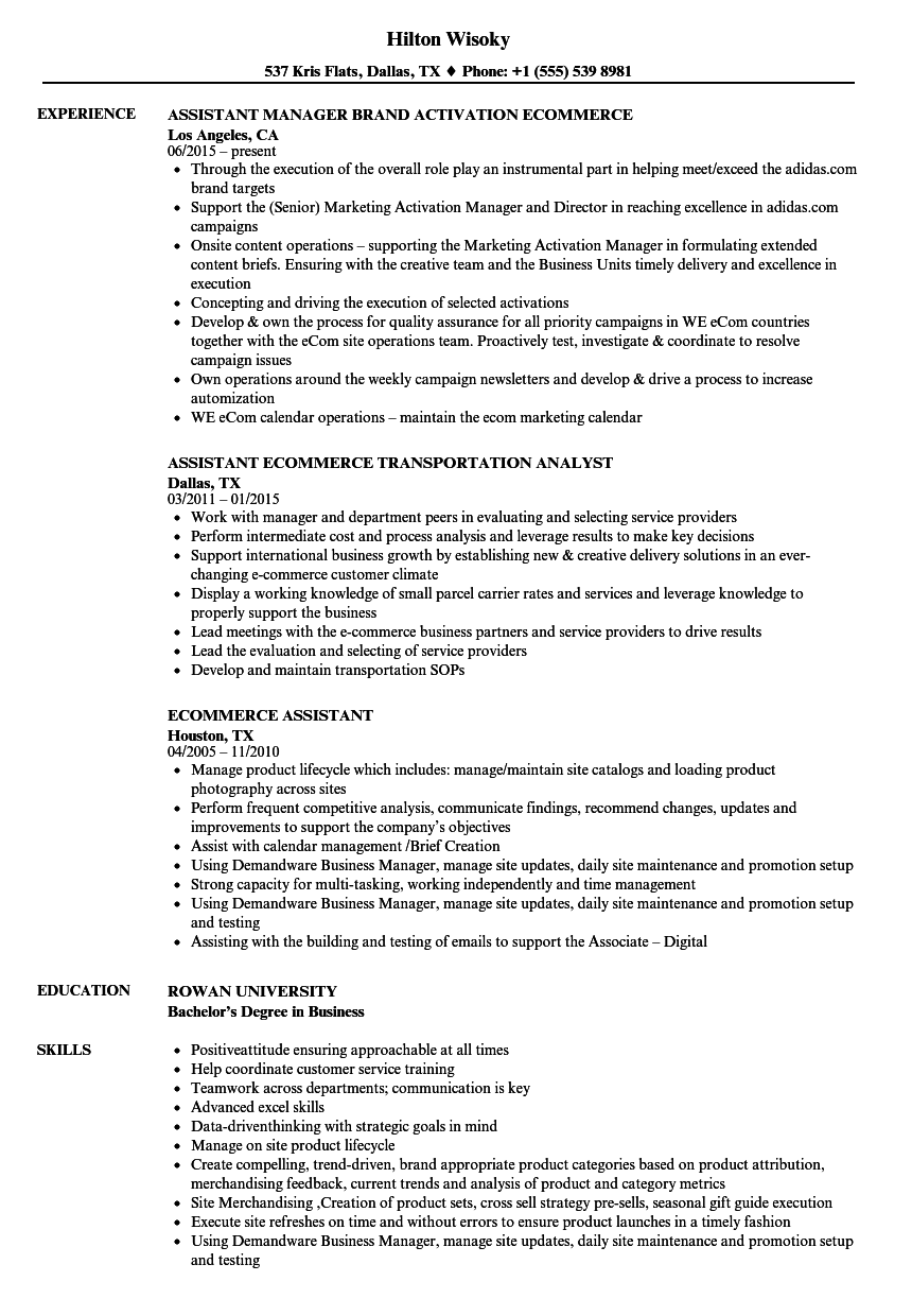 ecommerce assistant resume samples velvet jobs