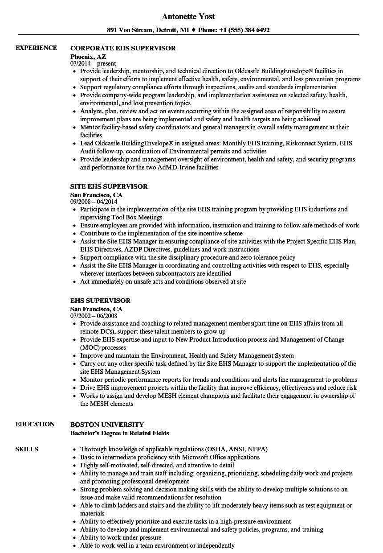 download ehs supervisor resume sample as image file