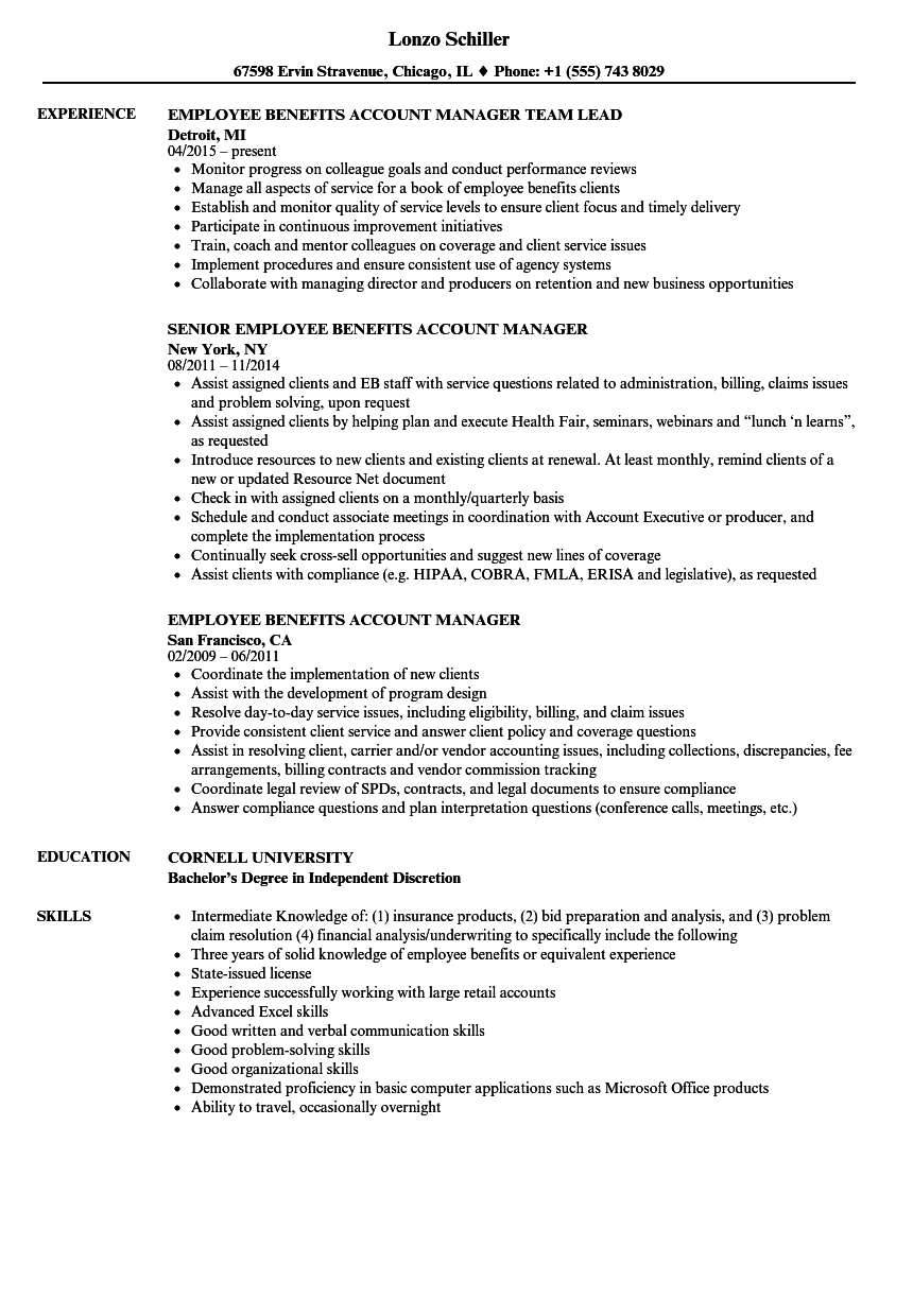 Employee Benefits Account Manager Resume Samples | Velvet Jobs