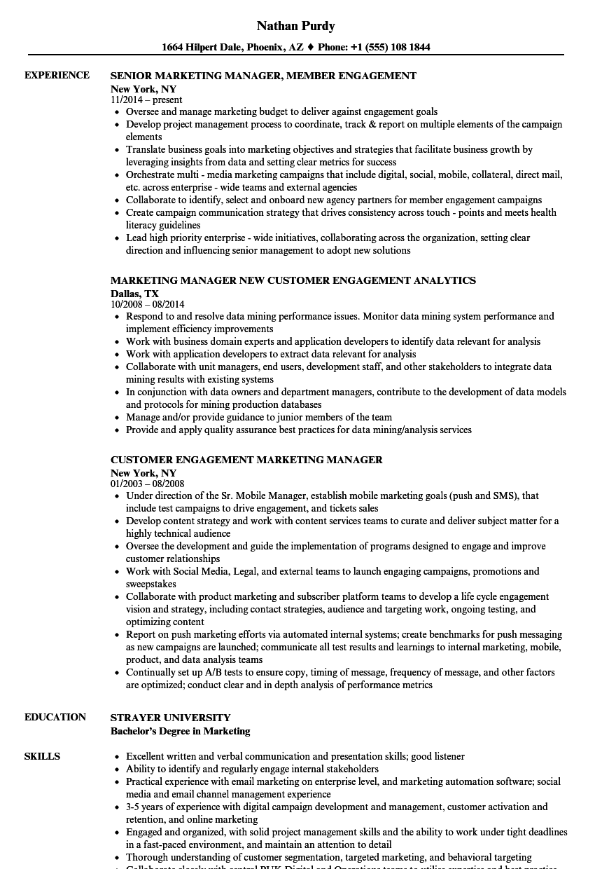 marketing manager resume examples