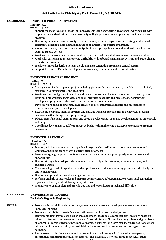 download engineer principal resume sample as image file - Principal Engineer Sample Resume