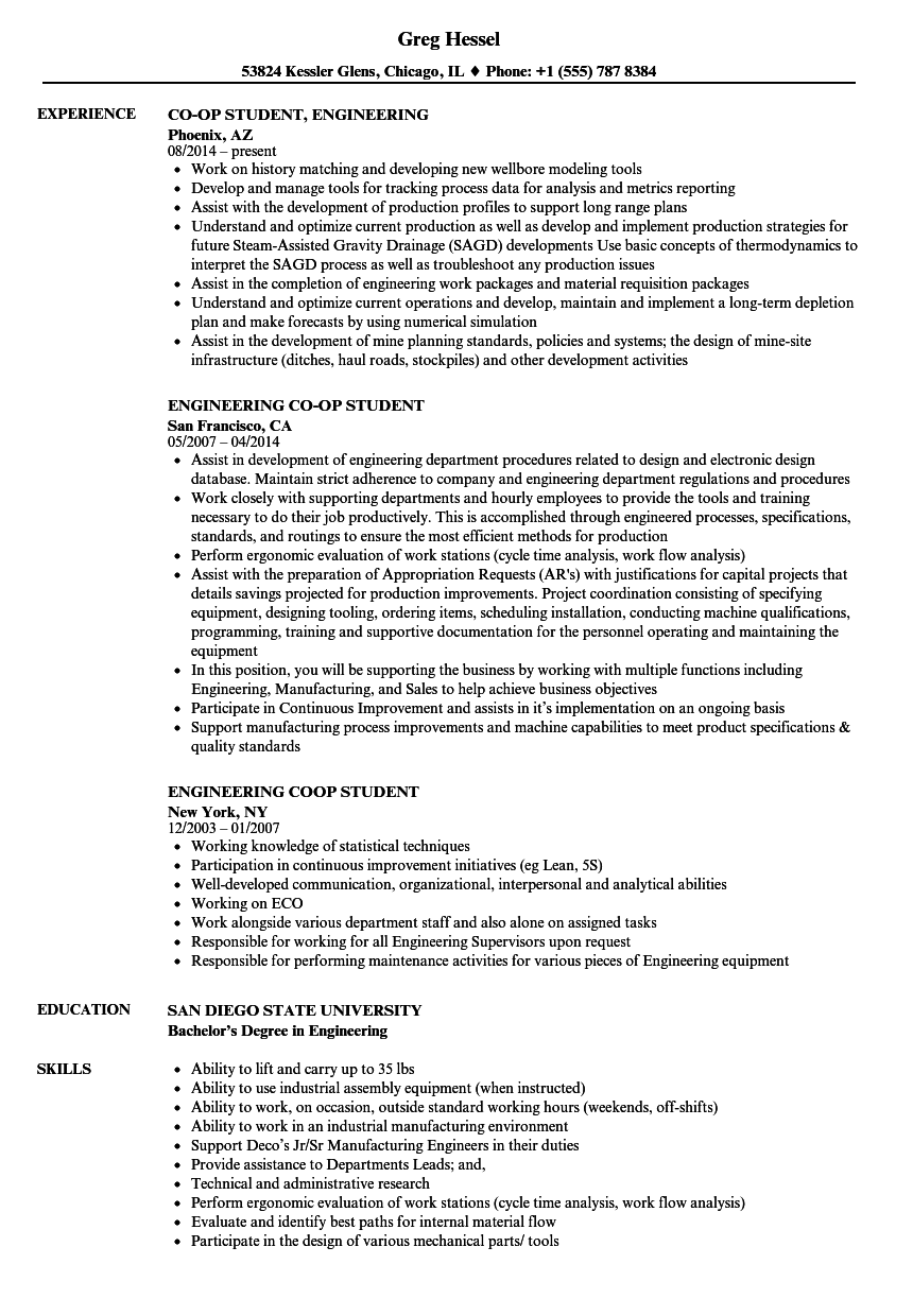 engineering student resume samples