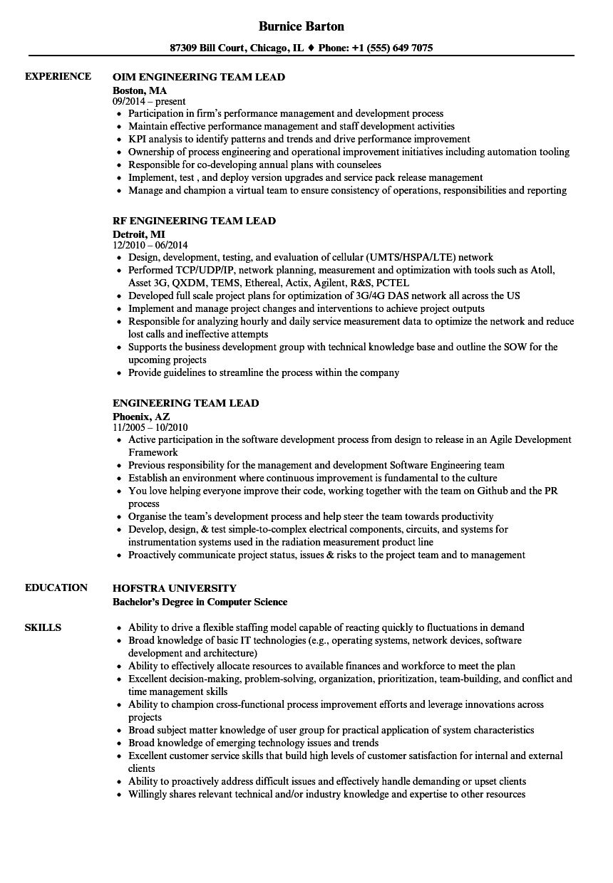engineering team lead resume samples