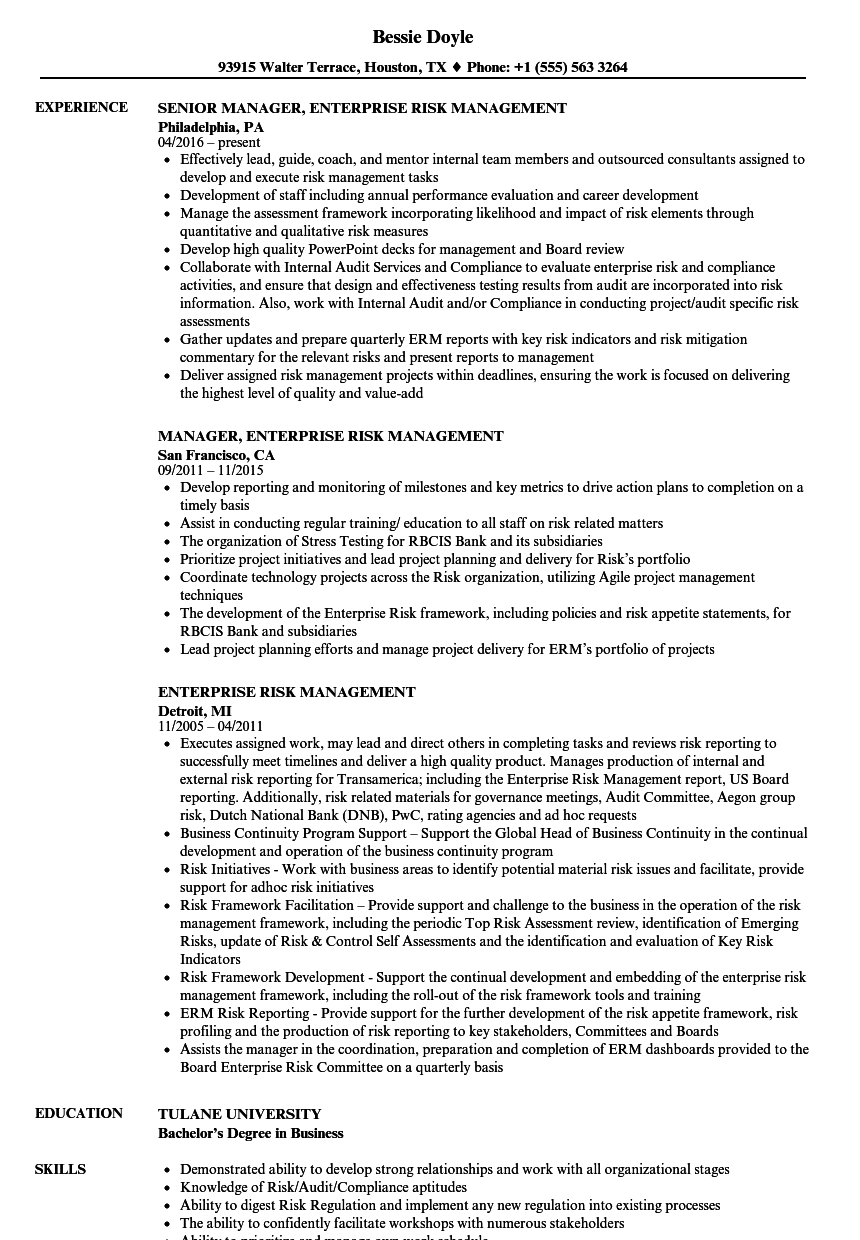 Enterprise Risk Management Resume Samples | Velvet Jobs