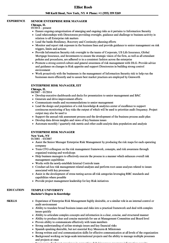 Enterprise Risk Manager Resume Samples | Velvet Jobs