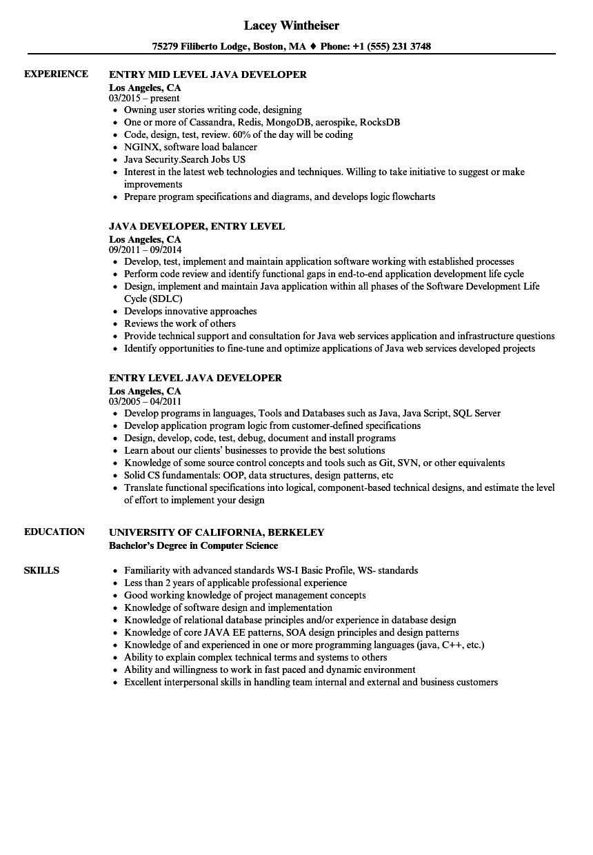 entry level java developer resume samples