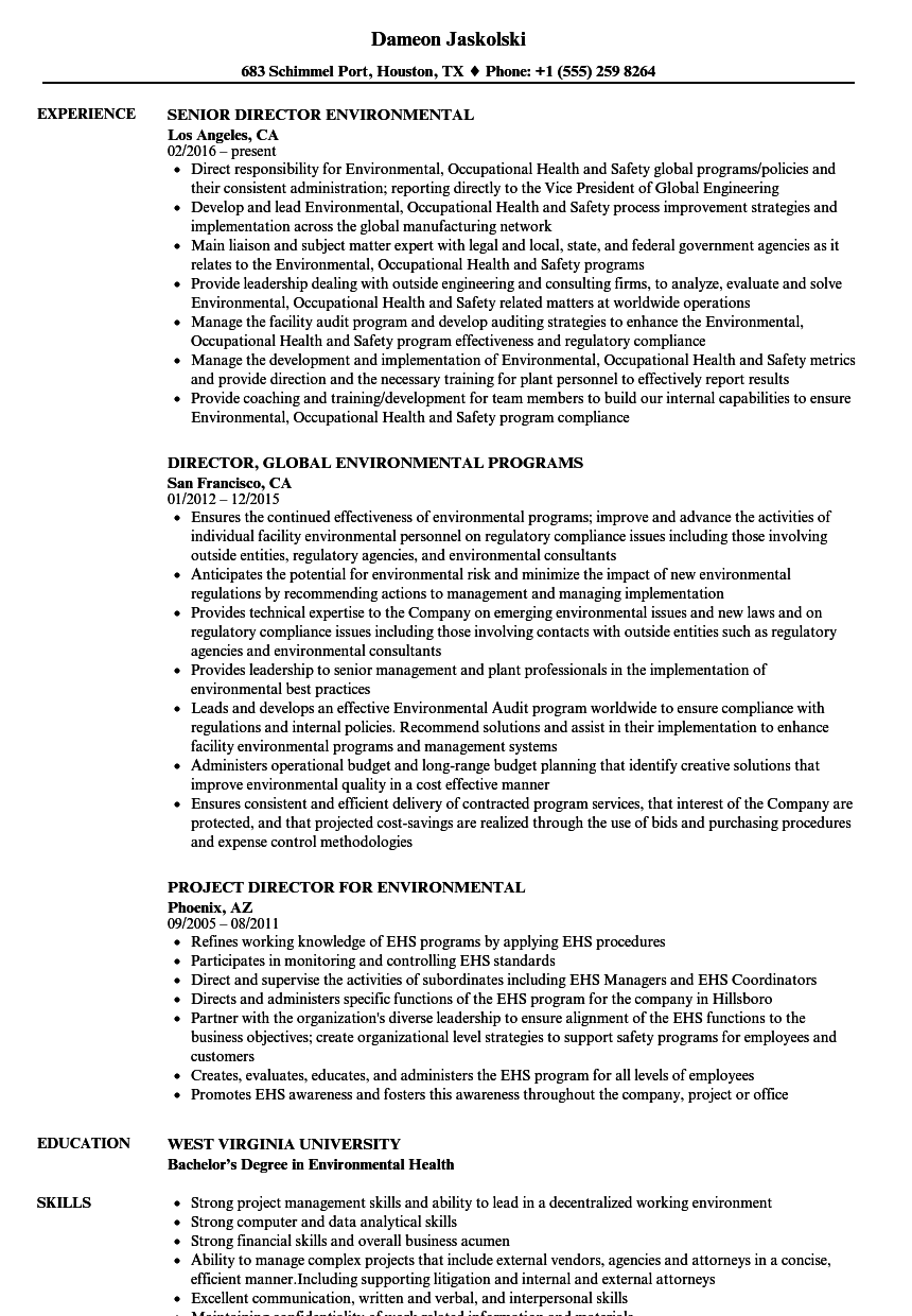 Download Environmental Director Resume Sample As Image File