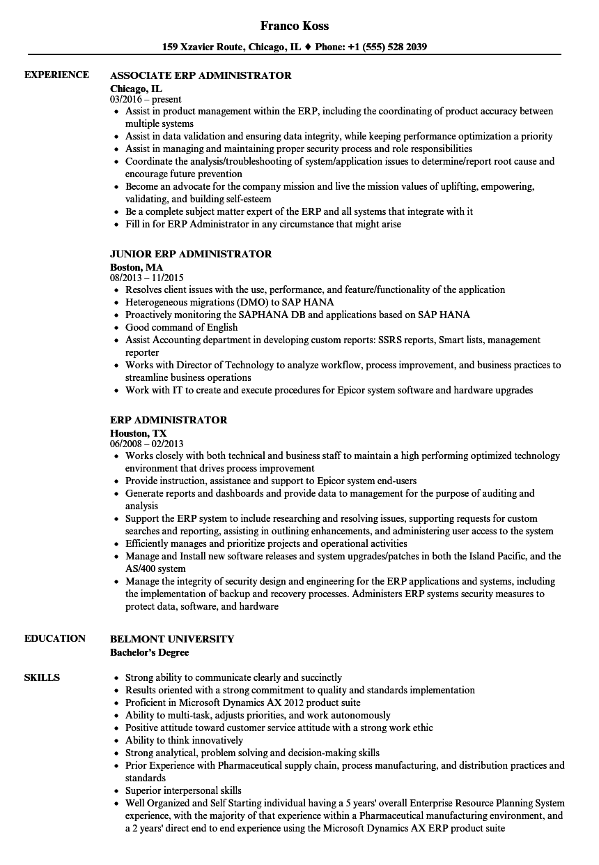 Download ERP Administrator Resume Sample As Image File