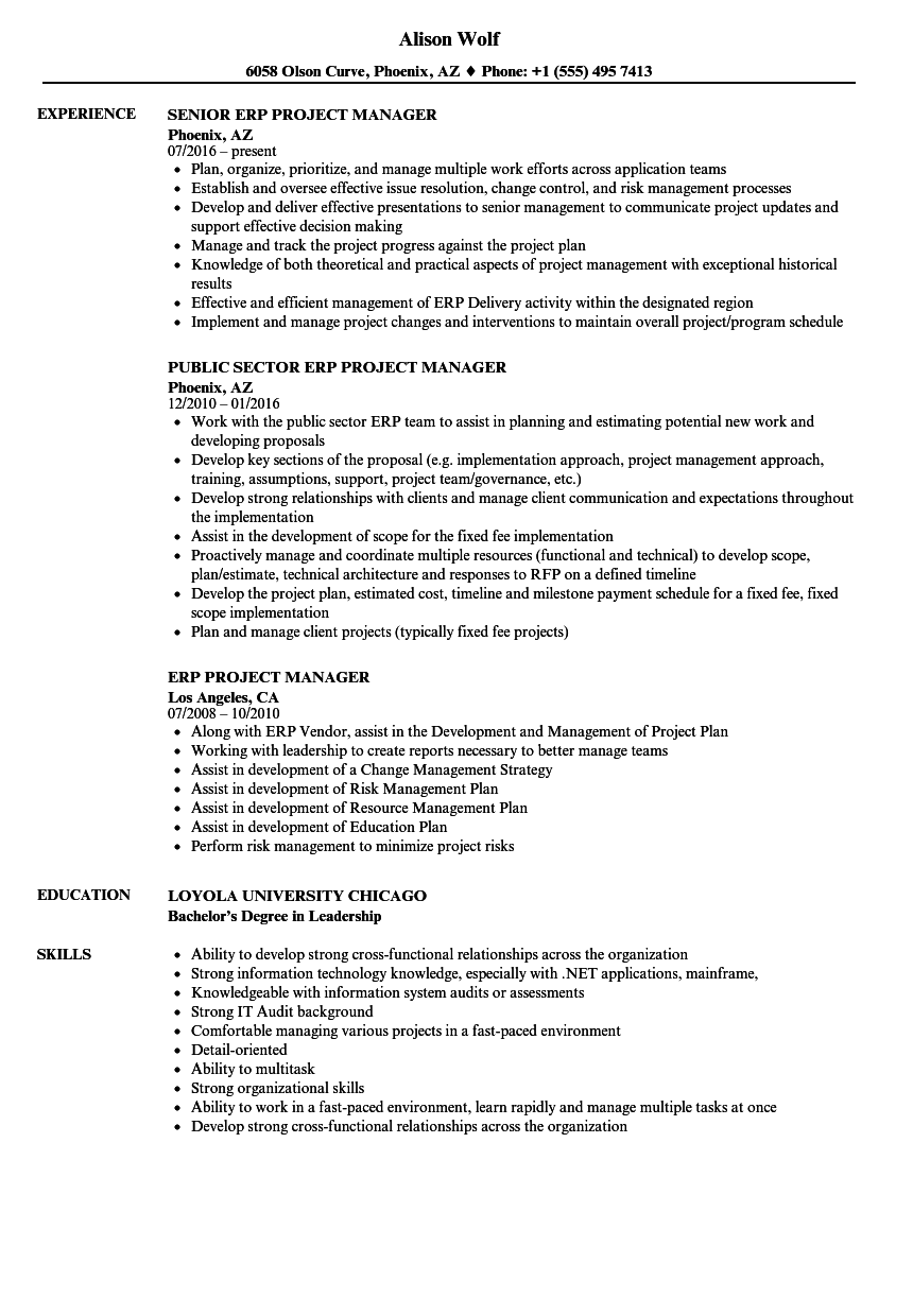 ERP Project Manager Resume Samples | Velvet Jobs