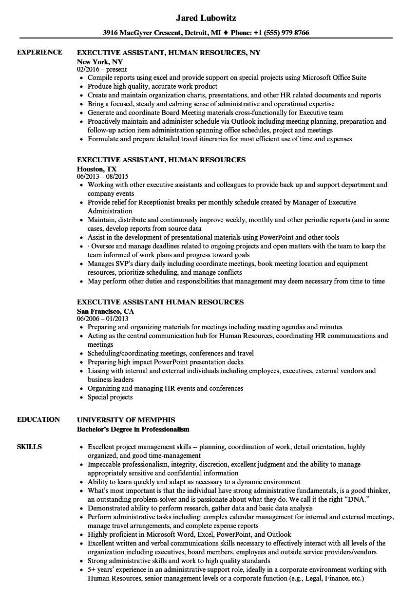 executive assistant  human resources resume samples