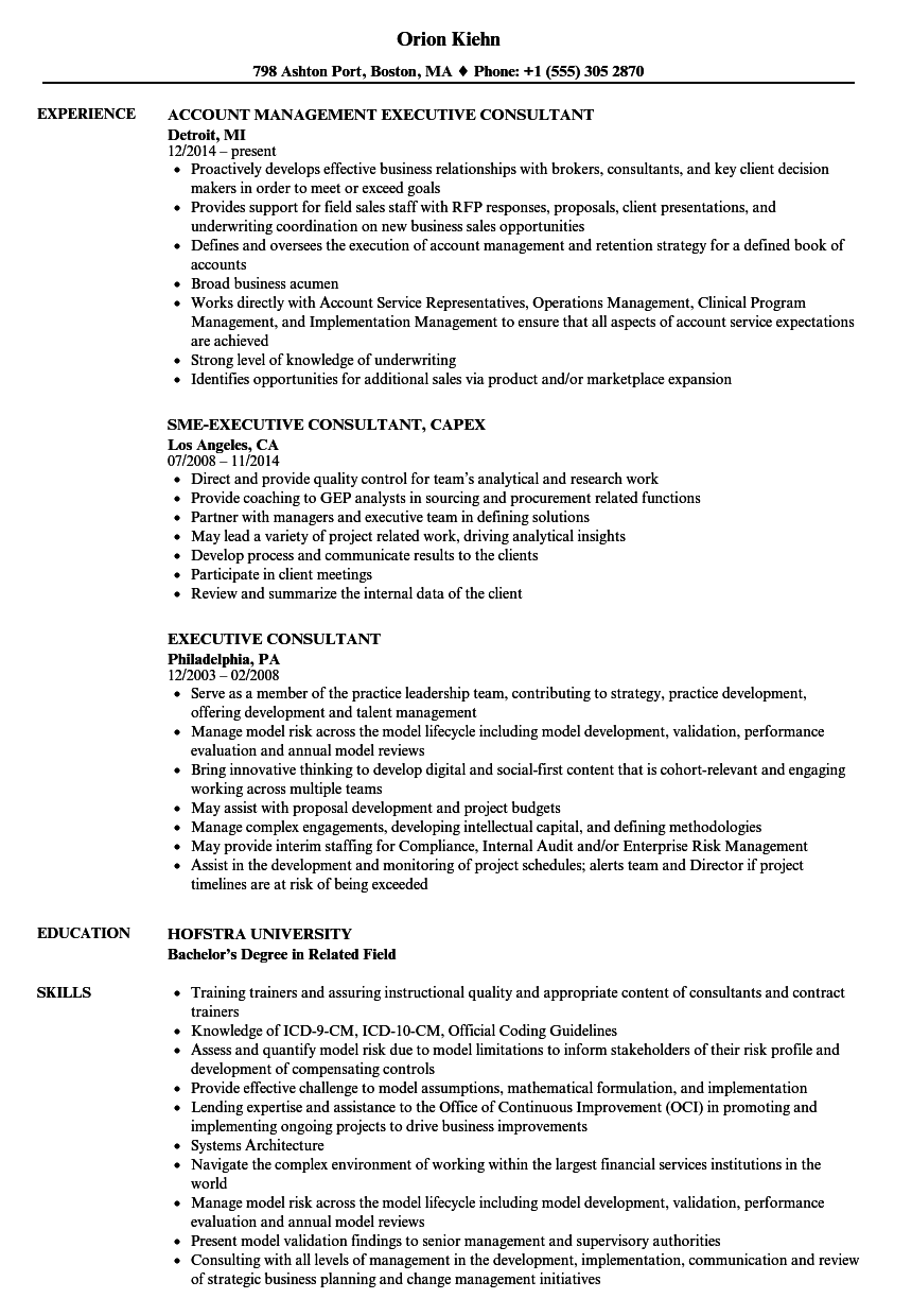 executive consultant resume samples