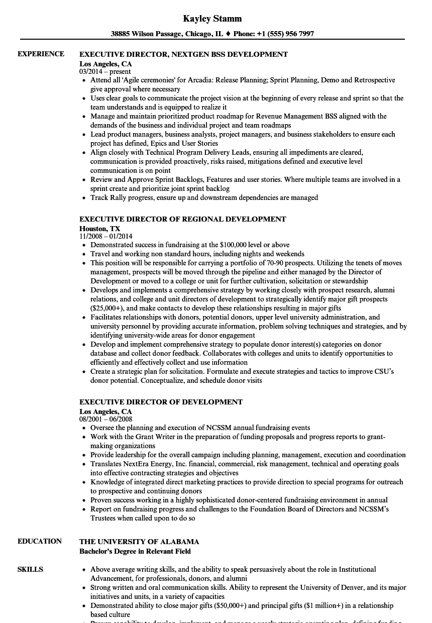 Executive Director, Development Resume Samples | Velvet Jobs
