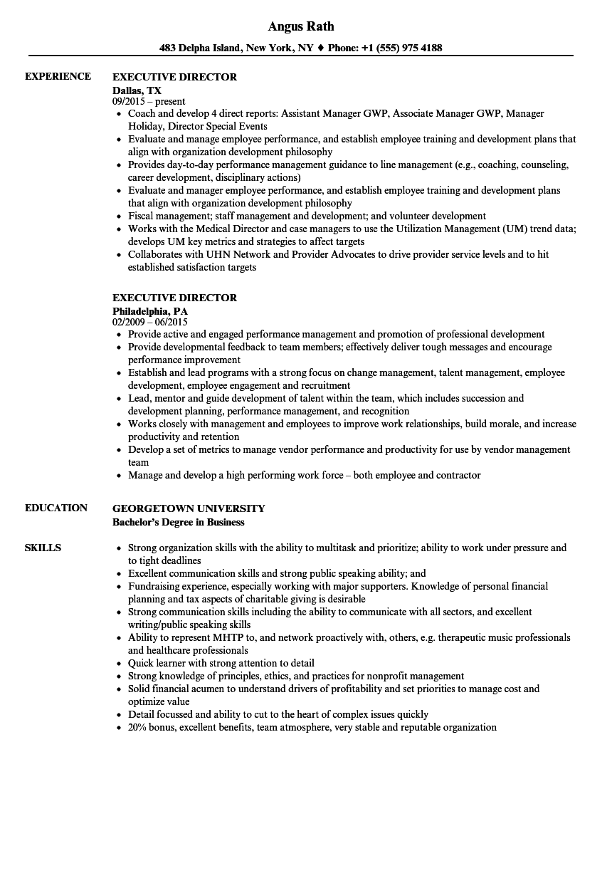 executive director resume samples velvet jobs