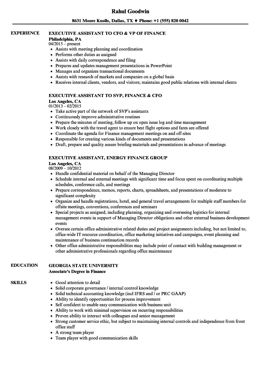 Executive, Finance Resume Samples | Velvet Jobs