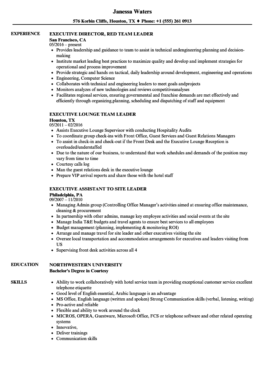 executive leader resume samples