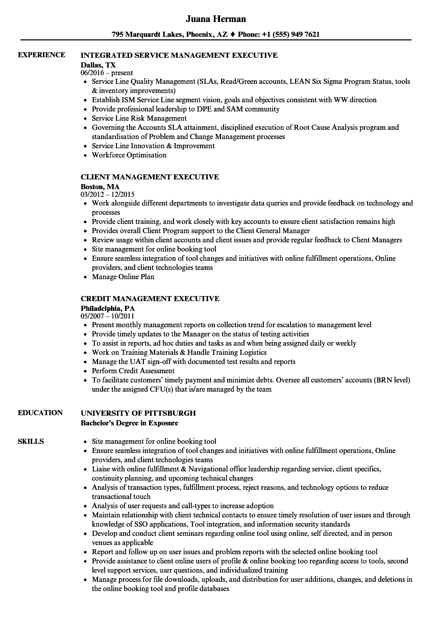 executive management resume samples