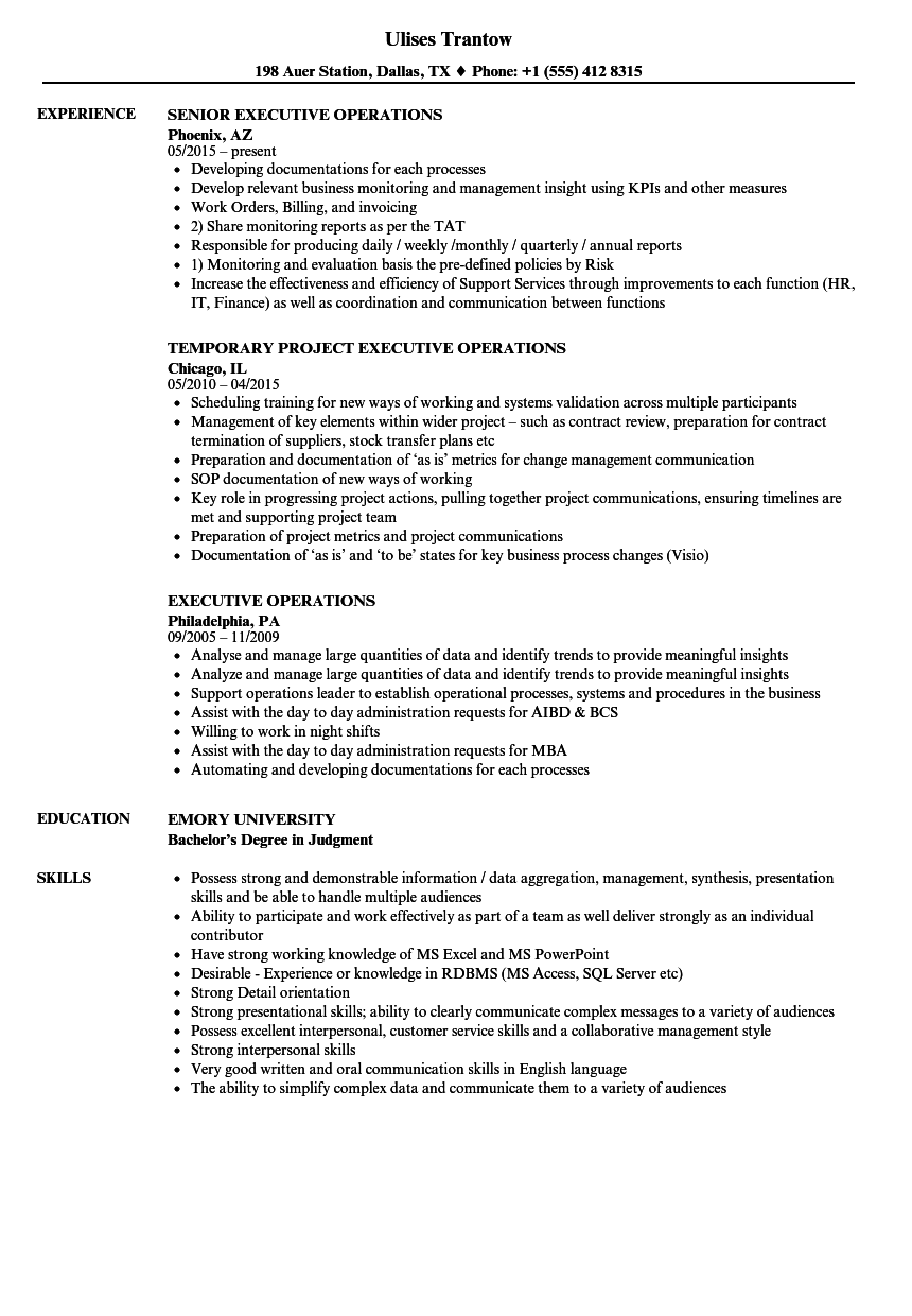 executive operations resume samples