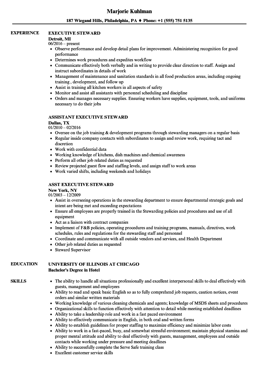 executive steward resume samples