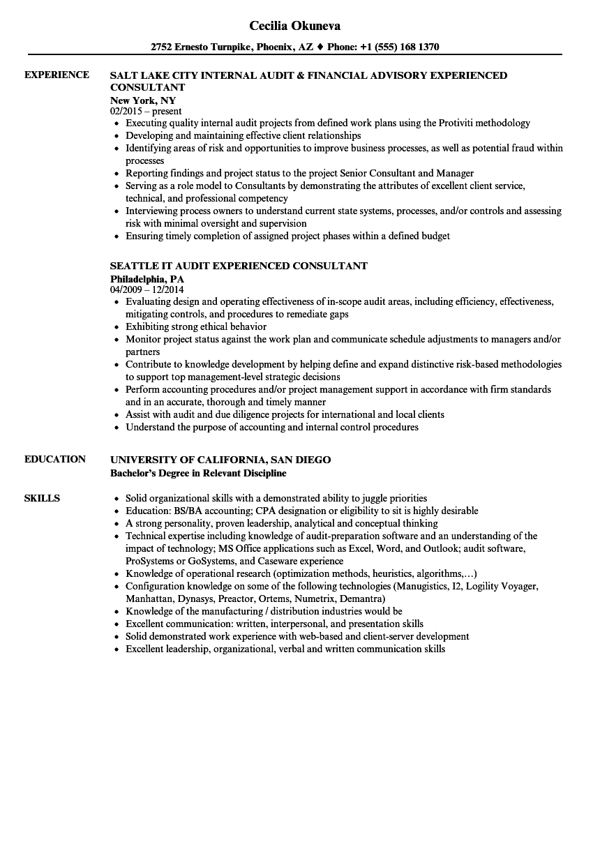 Experienced Consultant Resume Samples