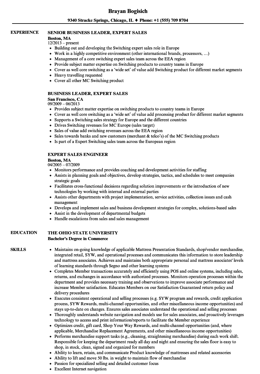 Download Expert Sales Resume Sample As Image File  Expert Resume Samples