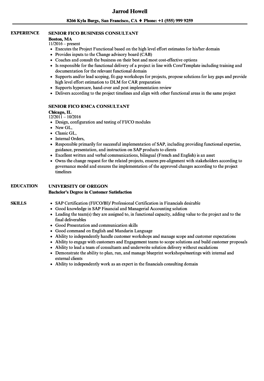 Fico Consultant Resume Samples | Velvet Jobs